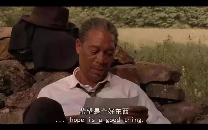 张鹏国:一个CEO的精神分裂史